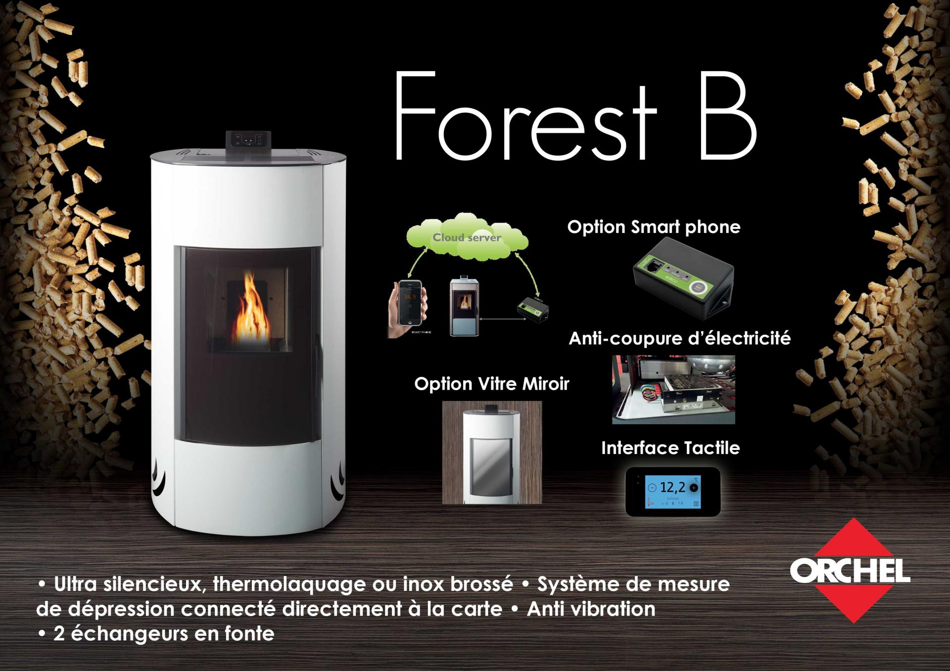 4 forest b